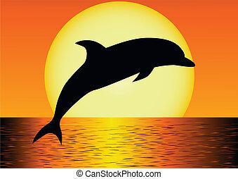 golfinho, silueta