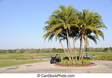 golfkarren, palmen, und, florida, hotel, cluburlaub