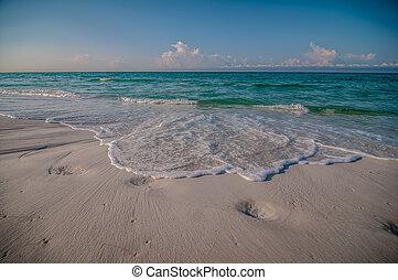 golfo, méxico, florida, escena, tropical, mar, playa, lado