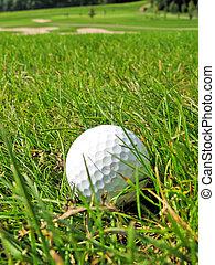 golfowa piłka, w, przedimek określony przed rzeczownikami, trawa