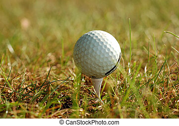 golfowa piłka, w, trawa