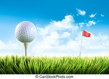 golfowa piłka, z, trójnik, w, przedimek określony przed rzeczownikami, trawa