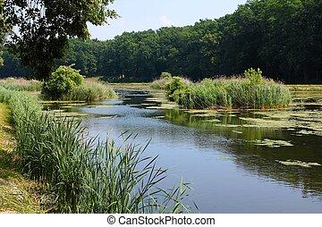 goluchow, parque, polônia