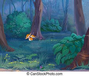 gombák, alatt, egy, erdő