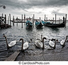 Gondolas in lagoon of Venice on sunrise, Italy