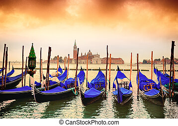 Gondolas in Venezia - Gondolas moored by Saint Mark square ...