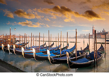Gondolas in Venice, Italy - Moored gondolas in a row in...
