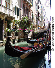 gondolas in venice - the gondolas in venice. italy