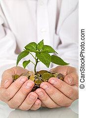 Good investment and money making concept - businessman hands holding pland sprouting from a handful of coins