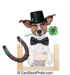 chimney sweeper dog - good luck chimney sweeper dog with hat...