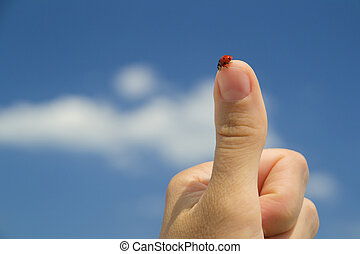 Red ladybird standing on the tip of the finger of a human hand making 'thumbs up' sign against blue sky with white clouds on a clear summer day