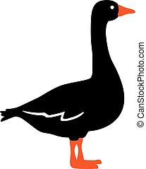 Goose in two colors