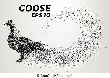 Goose of the particles. Goose consists of small circles. Vector illustration