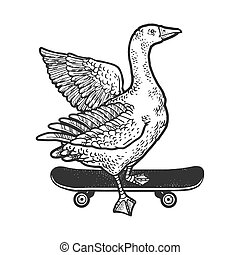 goose rides on a skateboard sketch engraving vector illustration. T-shirt apparel print design. Scratch board imitation. Black and white hand drawn image.