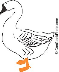 Goose vector illustration