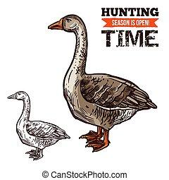Goose wild bird sketch for hunting sport design