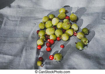 Gooseberries and cranberries are a bunch of on the fabric 1159.