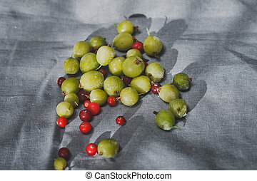 Gooseberries and cranberries are a bunch of on the fabric 1160.