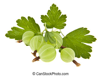 gooseberries isolated on white background