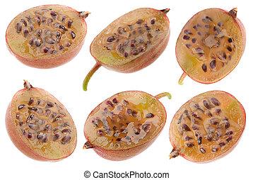 Gooseberry fruit collection