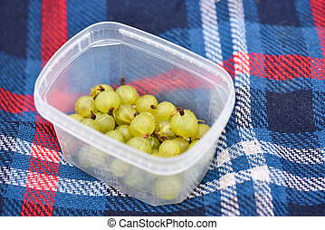 Gooseberry in a plate on the cover in the garden