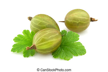 Gooseberry with leafs