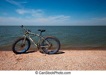 gorda, bicicleta, em, a, verão, ligado, a, praia., ciclismo, e, estilo vida ativo