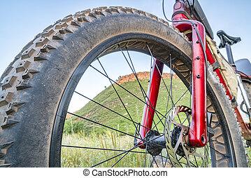 gorda, bicicleta, em, foothills, de, colorado