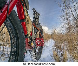 gorda, bicicleta, ligado, inverno, rastro
