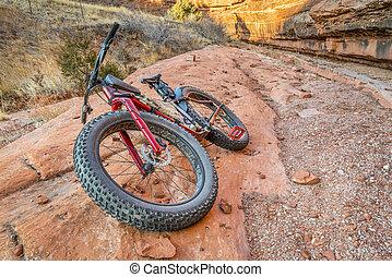 gorda, bicicleta, ligado, um, slickrock, em, a, arenito,...