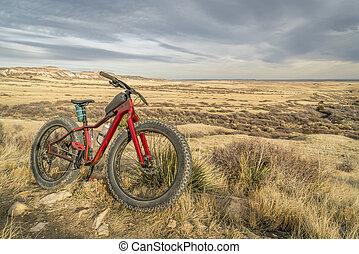 gorda, bicicleta montanha, ligado, um, rastro, em, norte, colorado