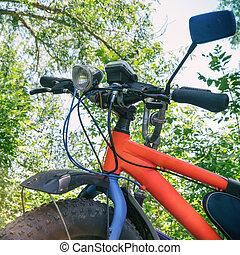 gorda, bike-mountain, bicicleta, com, grossas, pneus, em, floresta