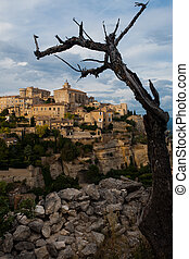 Gordes Provence Village Framed By Tree