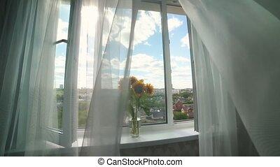 gordijnen, puur, blazen, -, vaas, zonnebloemen, witte , wind