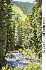 Gore Creek in Vail Colorado