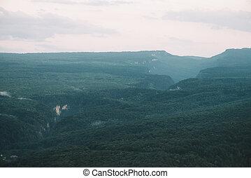 Gorge in summer valley.