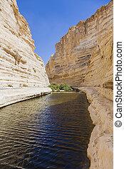 gorge in the Negev desert