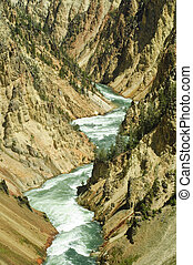 Gorge of the yellowstone river