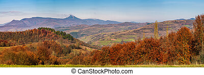 gorgeous autumn countryside panorama in mountains. forest...