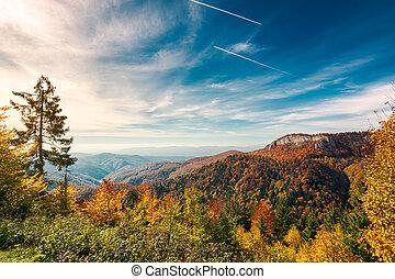 autumn landscape in mountains of Romania - gorgeous autumn...