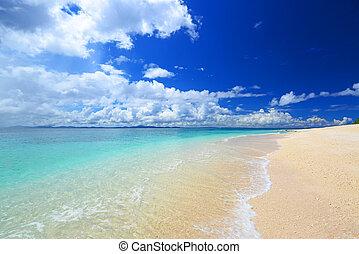Gorgeous Beach in Summertime