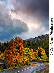 gorgeous cloudy sky over colorful foliage on serpentine -...