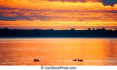 Gorgeous colorful clouds over water with swimming ducks