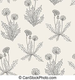 Gorgeous contour botanical seamless pattern with blooming dandelion plants, flowers, seed heads and leaves hand drawn in retro style. Natural vector illustration for fabric print, wallpaper.