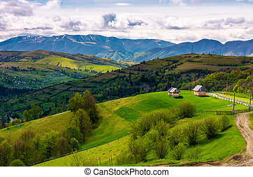 gorgeous countryside in Carpathian mountains. lovely nature...