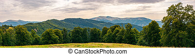 gorgeous mountain panorama in summer afternoon. primeval...