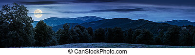 gorgeous mountain panorama in summer at night in full moon...