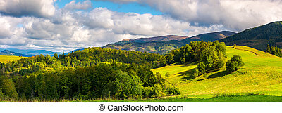 gorgeous panorama of mountainous landscape. woods and grassy...