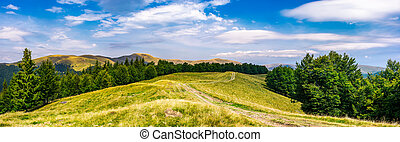 gorgeous panorama of Svedovets mountain ridge. country road...
