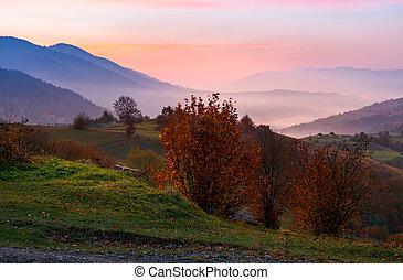 gorgeous purple dawn in mountains. beautiful autumn...